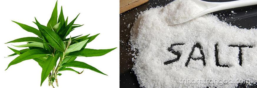 Học cách làm mặt nạ trắng da từ rau răm 1