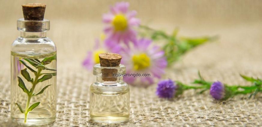 Phương pháp trị nám da tại nhà bằng kết hợp các loại tinh dầu