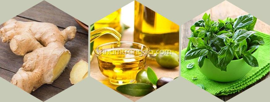 Rau húng quế, dầu oliu và gừng chống rụng tóc