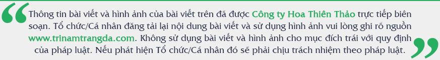 Phương pháp khắc phục đốm nâu tại nhà - Nguồn: Trị Nám Trắng Da (trinamtrangda.com)